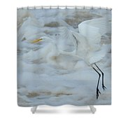 Egret Above Cloud Or Water Shower Curtain