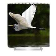 Great Egret Amazon River Shower Curtain