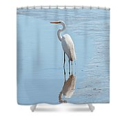 Great Egret And Reflection Shower Curtain