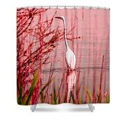 Great Egret Ardea Alba Egretta Shower Curtain