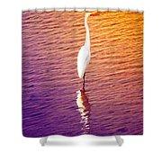 Great Egret At Sundown  Shower Curtain