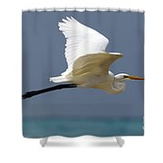 Great Egret Galapagos Shower Curtain