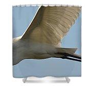 Great Egret In Flight Shower Curtain