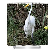 Great Egret In The Green Shower Curtain
