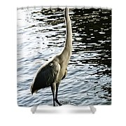 Great Egret No. 2 Shower Curtain