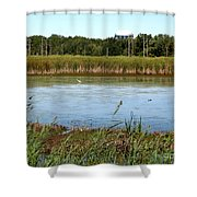 Great Egret On Berm Pond At Tifft Nature Preserve Buffalo New York Shower Curtain