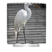 Great Egret On The Pier Shower Curtain
