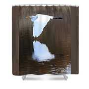 Great Egret Over The Pond Shower Curtain