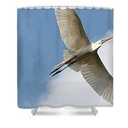 Great Egret Overhead Shower Curtain