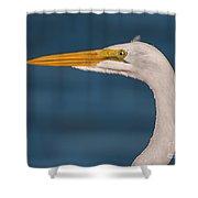 Great Egret Portrait Shower Curtain