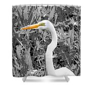 Great Egret Poster Shower Curtain