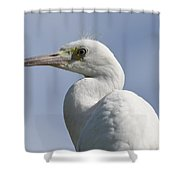 Great Egret Profile Shower Curtain