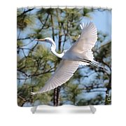 Great Egret Spirit Shower Curtain