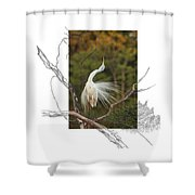 Great Egret - Stretch Shower Curtain