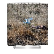 Great Egret Takes Flight Shower Curtain