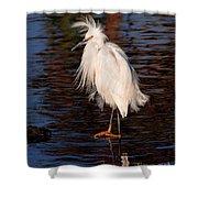 Great Egret Walking On Water Shower Curtain