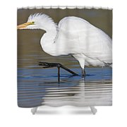 Great Egret With Leg Up Shower Curtain