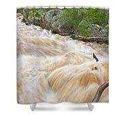 Great Falls White Water #3 Shower Curtain