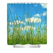 Great Fields Shower Curtain
