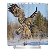 Great Gray Owl Pictures 767 Shower Curtain