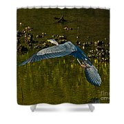 Great Heron Over Oyster Beds Shower Curtain