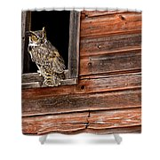Great Horned Shower Curtain