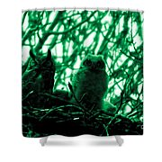Great Horned Owl And Owlet Shower Curtain