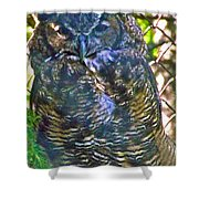 Great Horned Owl In Salmonier Nature Park-nl Shower Curtain