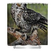 Great Horned Owl On Branch Shower Curtain