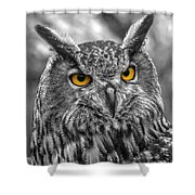 Great Horned Owl V9 Shower Curtain