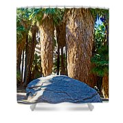 Great Sliding Rock In Lower Palm Canyon In Indian Canyons Near Palm Springs-california Shower Curtain