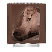 Great Sphinx At Musee Du Louvre Shower Curtain