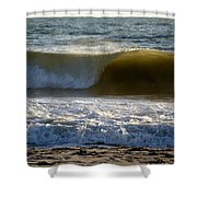 Great Wave Action Shower Curtain