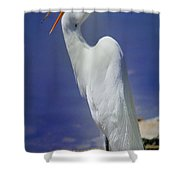 Great White Egret 2 Shower Curtain