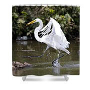 Great White Egret And Turtle Friends1 Shower Curtain