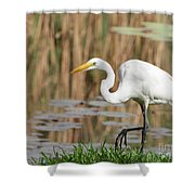Great White Egret By The River Too Shower Curtain
