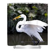 Great White Egret Eating Fish 1 Shower Curtain