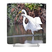 Great White Egret Fishing 1 Shower Curtain