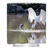 Great White Egret Fishing Sequence 4 Shower Curtain