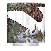 Great White Egret Splash 1 Shower Curtain