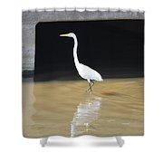 Great White Heron Shower Curtain