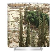 Green Among Cliffs Shower Curtain