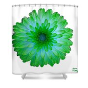 Green And Blue Dahlia Shower Curtain