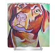 Green And Brown Dog Shower Curtain