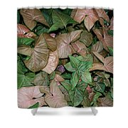 Green And Brown Leaves Shower Curtain