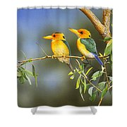Green And Gold - Yellow-billed Kingfishers Shower Curtain