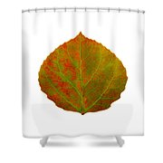 Green And Red Aspen Leaf 5 Shower Curtain