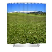 Green And Snow Shower Curtain