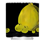 Apple And Vase  Shower Curtain