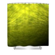 Green Background Shower Curtain
